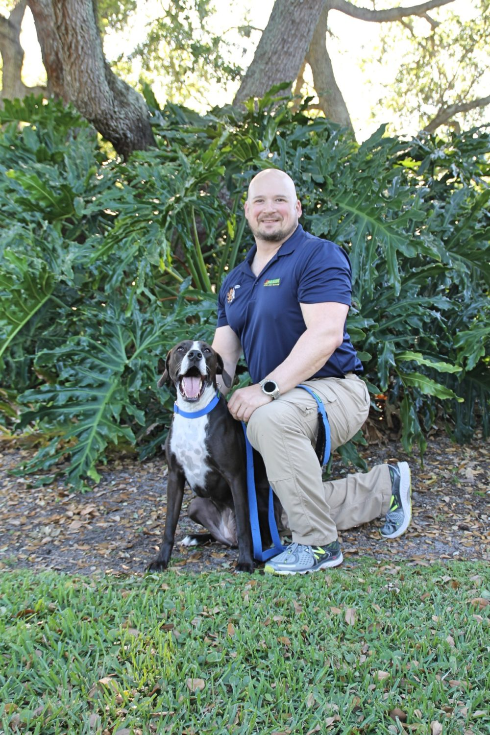 BARK BUSTERS HOME DOG TRAINING BREVARD COUNTY FLORIDA
